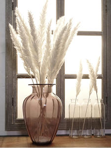 Wedding-Flower Dried Bunch Grass-Phragmites Artificial-Plants Pampas Bulrush Natural