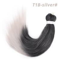 T1B/Silver Gray