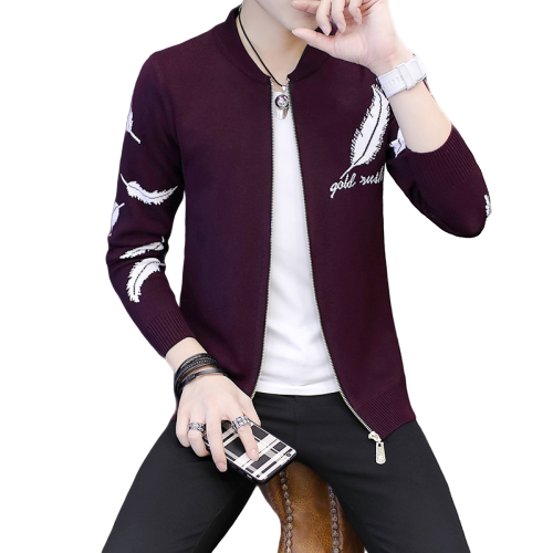 New Fashion 2020 Spring Casual Slim Fit Cardigan Men Autumn Feather Fnitted Stand Collar Zipper Sweater Men Knitwear Coat Male