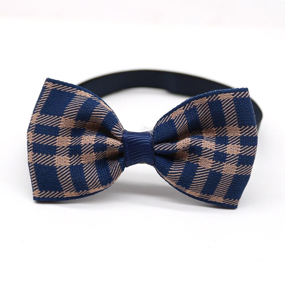 laços laço gravata gravata samll-cão animal de