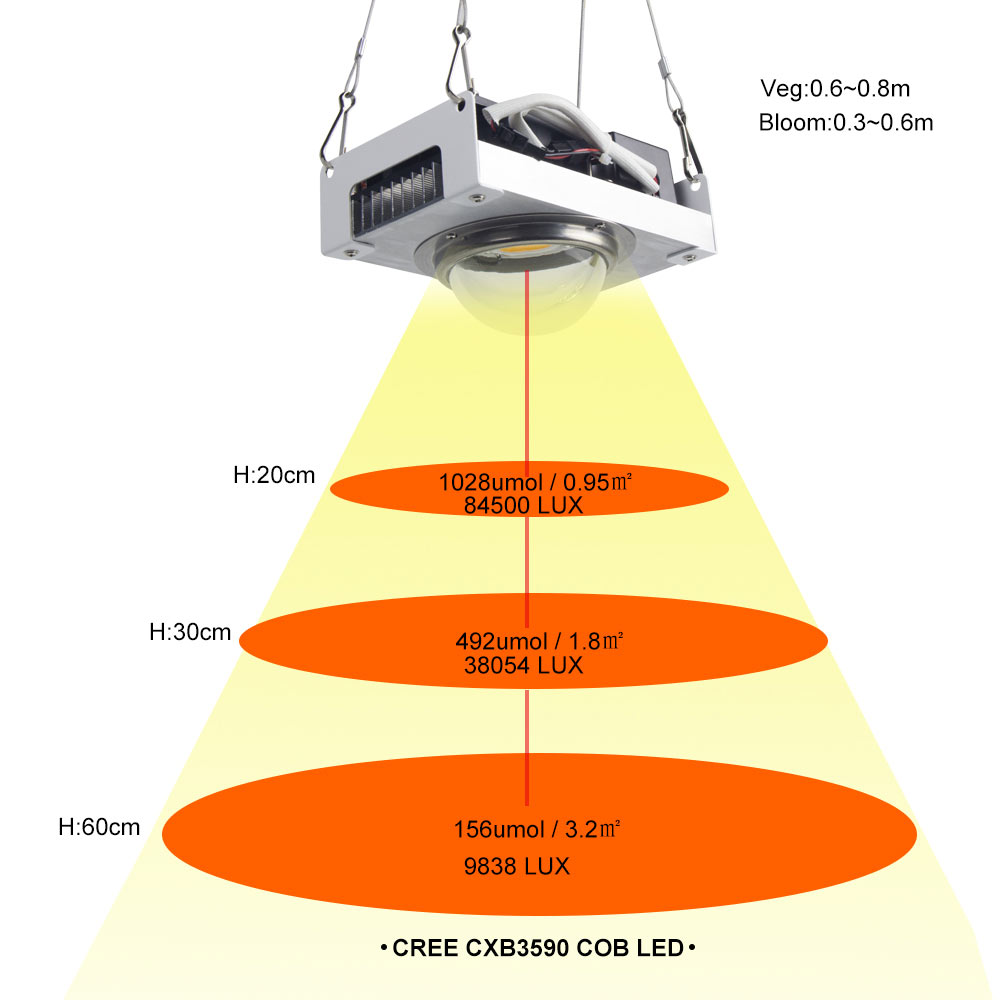 Image 3 - CREE CXB3590 COB LED Grow Light Full Spectrum 100W Citizen 1212 LED Plant Grow Lamp for Indoor Tent Greenhouses Hydroponic Plant-in LED Grow Lights from Lights & Lighting
