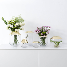 Europe style glass vase gold transparent flower vases Tabletop flowerpot bottle Hydroponic Container home decoration accessories