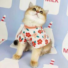 Одежда для кошек короткая летняя дышащая футболка милая одежда