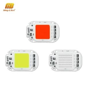 LED COB Lamp Bead 110V 220V 20