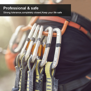 Image 5 - מקצועי טיפוס Carabiner בטיחות מסתובב הצמד בתפזורת קליפ תעופה אלומיניום וו חיצוני מאסטר מגן ציוד מקסימום עומס