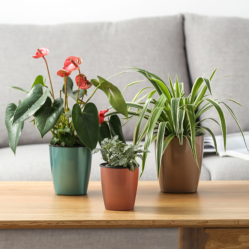 Lazy Plastic Flowerpot Automatic Water-Absorbing Basin Green Plant Balcony Office Home Fleshy Creative Flowerpot Factory Outlet