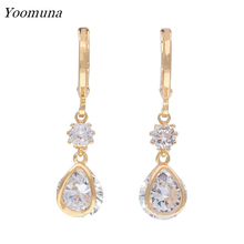 Exquisite long drop earrings Cubic Zircon Dangle Earrings With Rose Gold Color for women