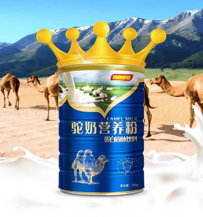 Camel Milk Nutrition Powder Protein 300g