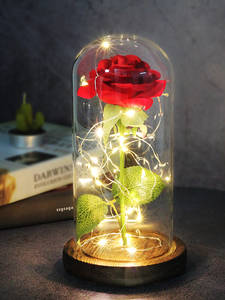 Eternal Rose Led-Light Glass-Dome Day-Gift The-Beast Beautiful Birthday-Valentines And