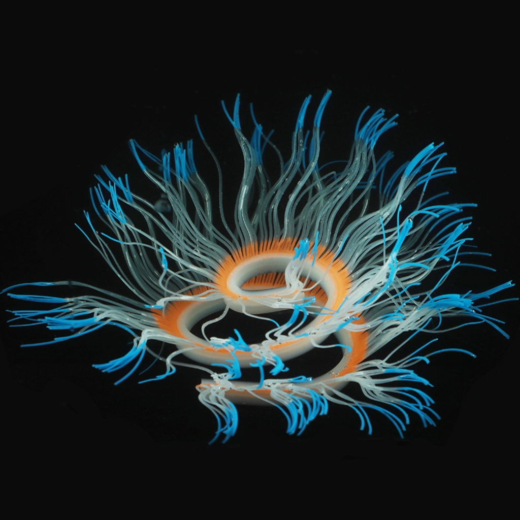 Aquatic Plant Coral Silicone Fluorescent Fish Tank Aquarium Decoration Ornaments