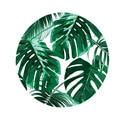 80x80 см зеленый Растительный круглый ковер напольные коврики войлочный пол коврик для гостиной