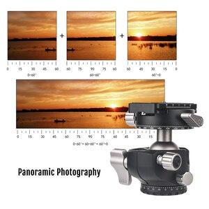 Image 2 - Andoer D 35 for Canon Nikon Sony DSLR Load 8kg Low Profile Double Panoramic Head CNC Machining Aluminum Alloy Ball Head Tripod