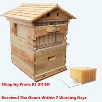 Caja de madera para abejas, equipo de apicultura automático, nido de abejas, herramienta para colmena