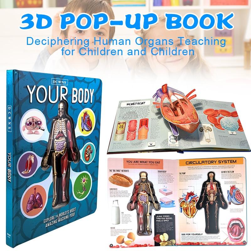 人体3d书