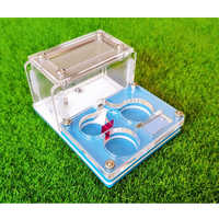 Reptile Container Acrylic Ant Farm Mini Ant Nest Insect Collection Box Reptile Home
