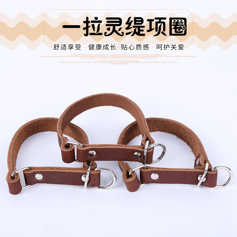 Cowhide Slip-Pull Greyhound Neck Ring Adjustable Bite-proof Protector Gree Dogs Hound Pet Supplies