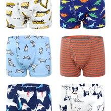 Shorts Boys Panties Boxer Underwear Kids 6-Pack Organic Teenager Baby Children's Cotton