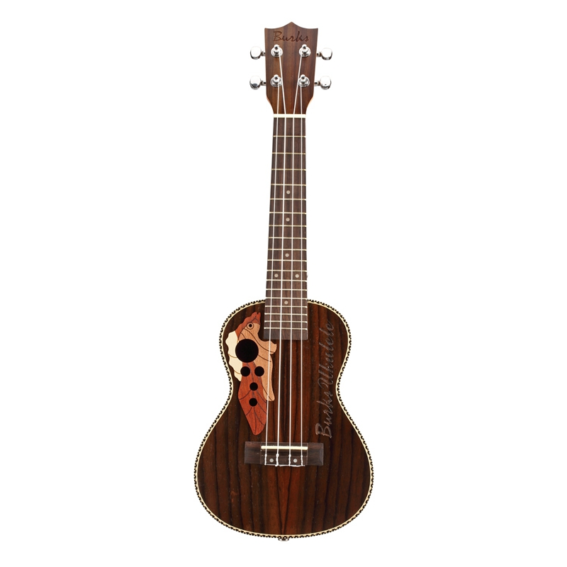 Burks ukulélé Soprano ukulélé 21 pouces bois de rose Uku ukulélé avec corde Aquila Mini Hawaii guitare Instruments de musique - 3