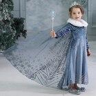 Girls Elsa Dress Hal...