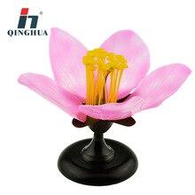 Destacável gigante dicot flor flor de pêssego flor anatomia modelo planta anatômico modelo biologia ensino experimento equipamentos