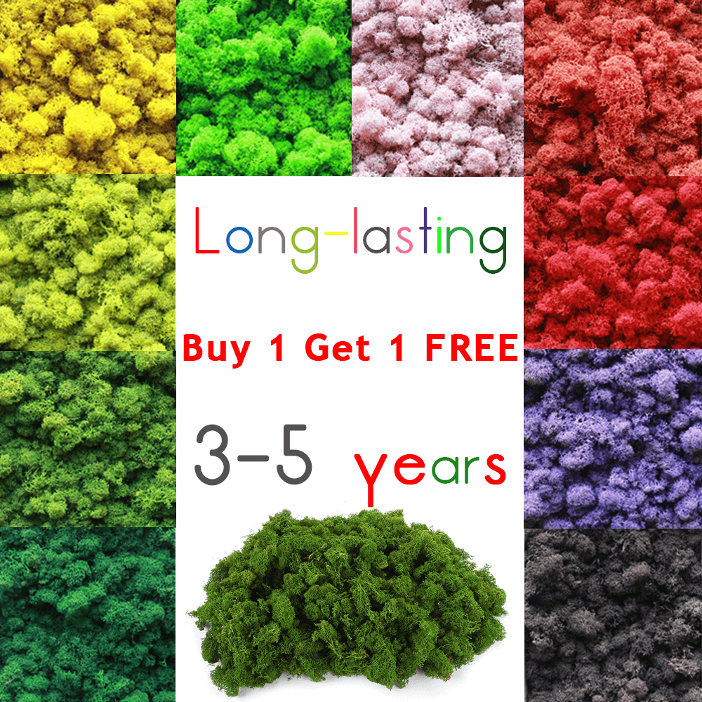 Long-lasting Standard Preserved Reindeer Moss In Various Colors For Flower Pot Decor - 10/ 20/ 50 Gram Happy New Year Christmas