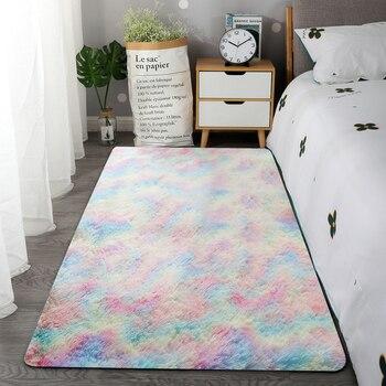 Soft Plush Carpet for Living Room 1