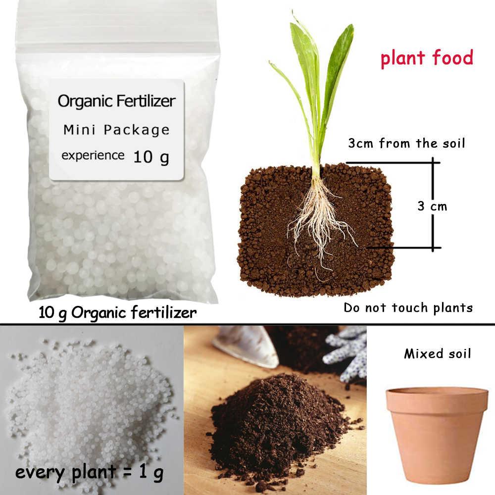 10 г карбамида, азот, мини-посылка, зеленая, универсальная, безопасная и безвредная для использования, цветочное растение, питание, сад