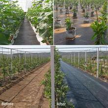 Tkanina barierowa do chwastów ogrodowych pokrywa roślinna przepuszczalna dla rolnictwa tkanina do pielenia tkanina z sadu PE szklarnia przeciwgraniczna tanie tanio Z tworzywa sztucznego black PE plastic 3M 5M 1 5M 1 * Orchard Ground Fabric drop shipping wholesale