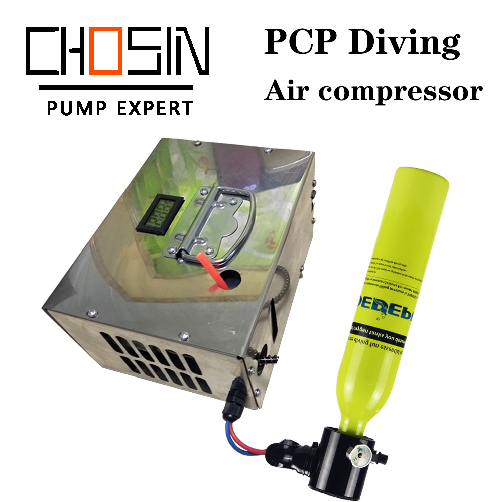 4500psi 300bar 30mpa 12v/220v Pcp Air Compressor 12v Mini Pcp Compressor Including Transformer Car High Pressure Air Compressor