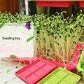 Новый двухслойный Soilless культуры бобы гидропоники лоток-питомник проращиватель лоток-питомник поднос для рассады Садовые принадлежности