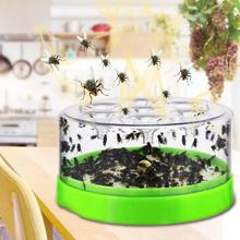 High quality Automatic Caught Fly Trap Mosquito Repeller Pest Catcher Killer for Hotel Home Indoor Supplier
