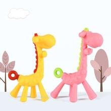 Детские зубы которые олень молярный стержень жираф чтобы Укусить