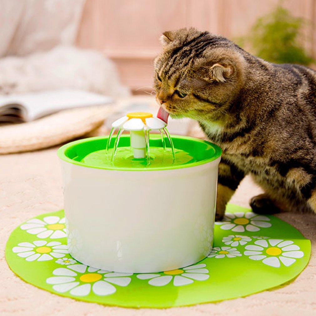automatico gato cao de estimacao fonte 04