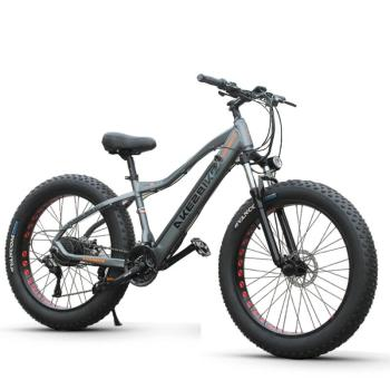 Electric Mountain Bicycle 48V 500W Two Wheels Electric Bicycles 26 Inch Fat Ebike 4.0 Snow Tire Electric Beach Snow Bike Adult