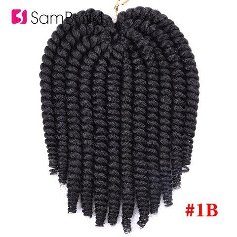 SAMBRAID Havana Mambo Twist Crochet Hair Braids 14 Inch 12 Strands/pack Synthetic Hair Ombre Braiding Hair Extensions 5 Colors Karachi