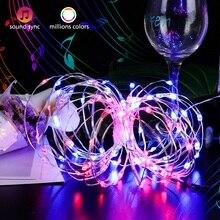 1M 5M 10M Waterproof LED Fairy Lights String Wire USB 5V RGB Garland Birthday Outdoor Christmas Tree Decoration Light
