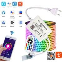 1-15M TUYA WIFI inteligente tira de LED 220V de cinta RGB voz Control RGB LED luces LED tira 5050 impermeable al aire libre jardín Alexa Google