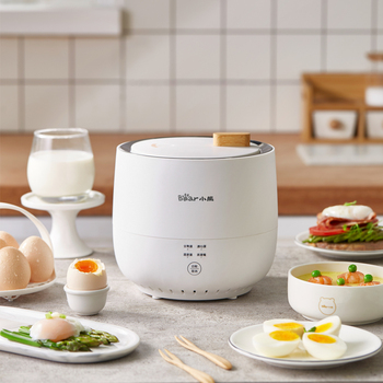 220V Electric Egg Cooker Household Breakfast Maker Multi Egg Custard/Hotspring Egg/Poached Egg/Boiled Egg Steaming Cooker 3