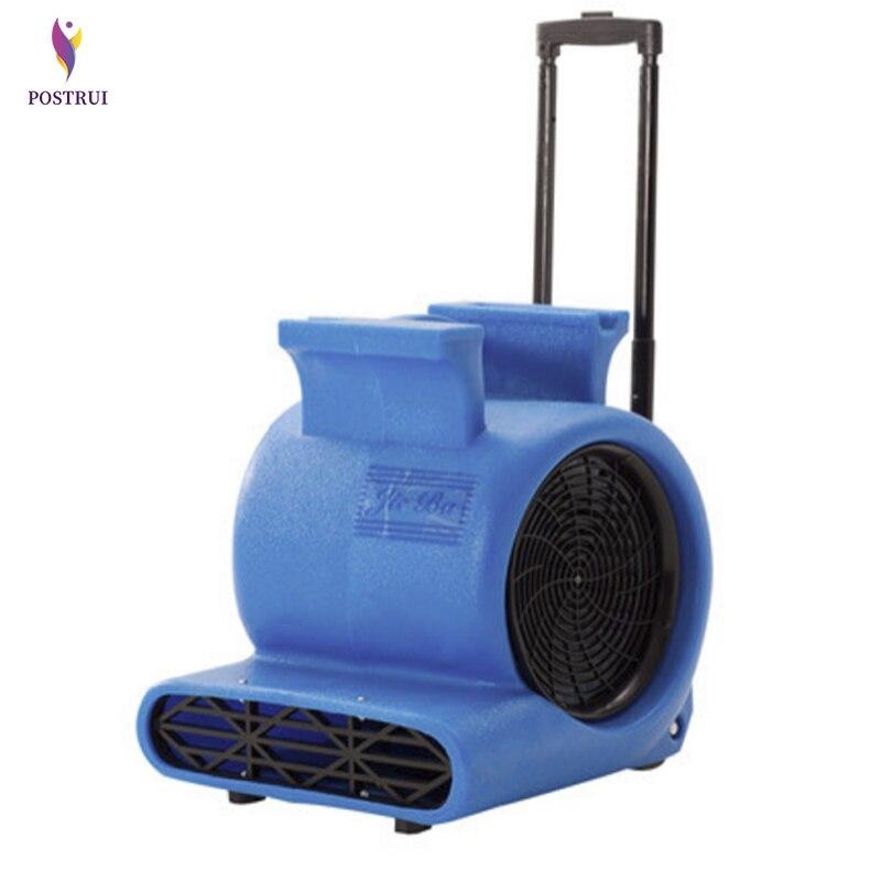 1000W forte Machine de séchage à trois vitesses BF535 électrique tapis nettoyage et séchage Machines avec traction tige déshumidificateur 220V 1PC