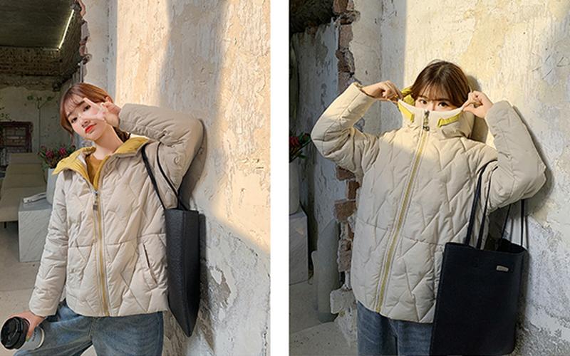 2019 Winter New Short Jacket Women Standing Collar Female Hooded Coat_A9_10