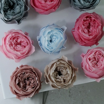 Domestic Austin 4-4.5cm | 8 Single Aili A- Level Preserved Fresh Flower DIY Material Package Rose Keychain Gift Box