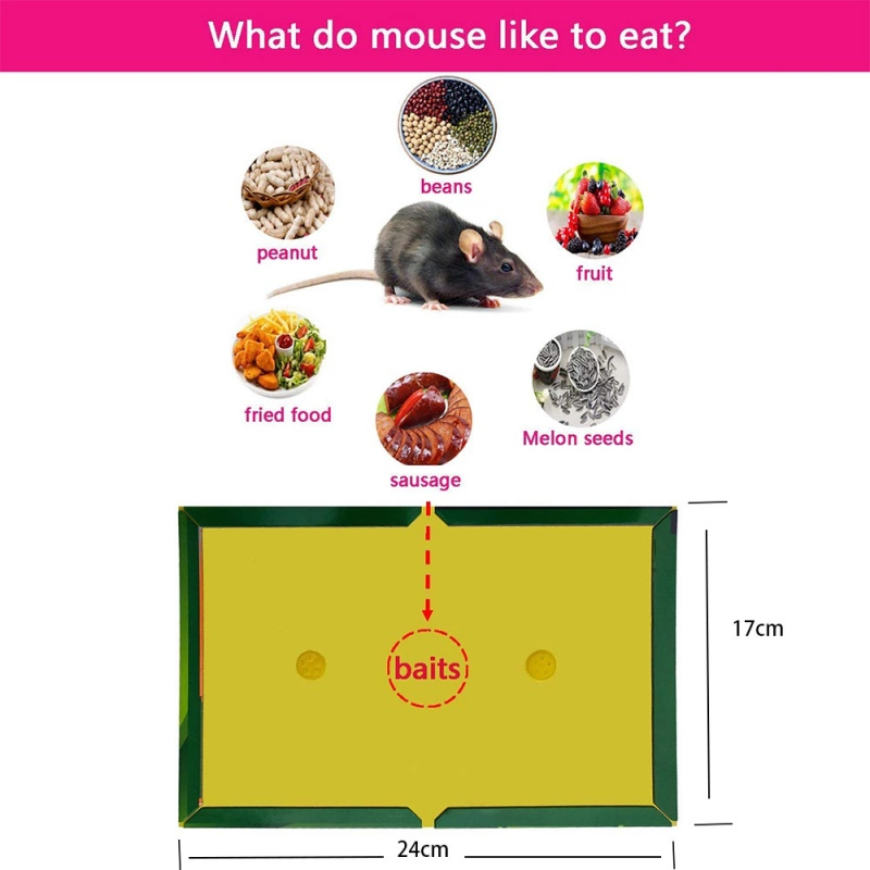 Mouse Board Sticky Mice Glue Trap High Effective Rodent Rat Snake Bugs Catcher Pest Control Reject Non toxic Eco Friendly Traps Home & Garden - title=