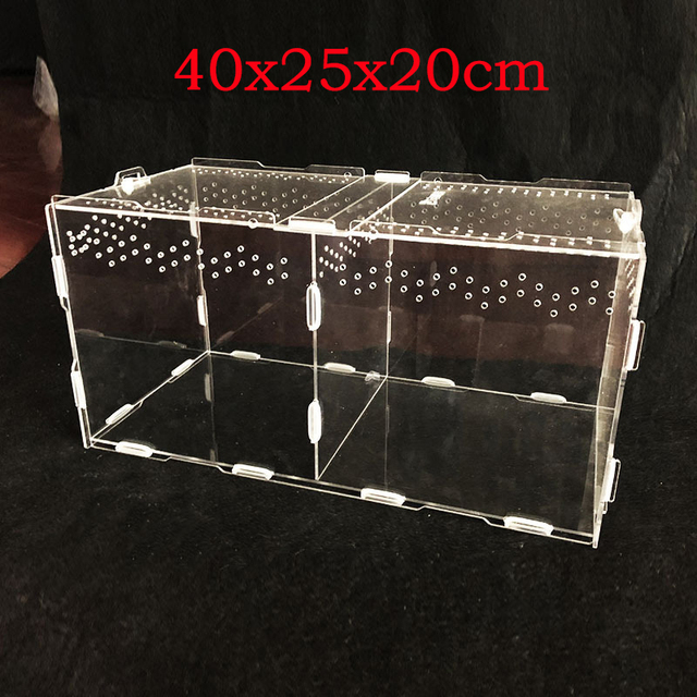 Reptile & Insect Breeding Box For Spiders Scorpions Crickets And Small Snakes. 5