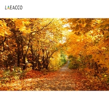 Laeacco Autumn Yellow Forest Trees Road Scenic Photography Backgrounds Customized Photographic Backdrops For Photo Studio