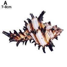 Concha de conchas Natural de mil manos, caracol de unicornio, espécimen de Acuario, adornos de pez para el hogar, decoración de tanques H3R7