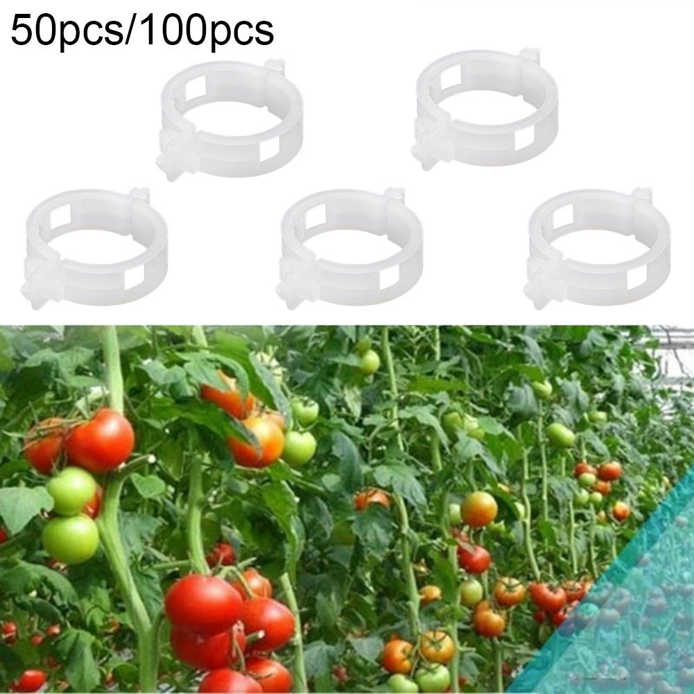 50/100Pcs Clear Hanging Plastic Vegetables Plant Vine Gardening Tool Clips Clamp