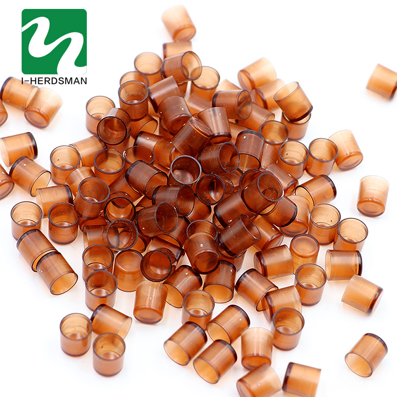 240Pcs Beekeeping King Queen Rearing Box Brown Queen Cells Plastic Cups Cupularve Tools Bee Keeper Tools Apiculture Supplier