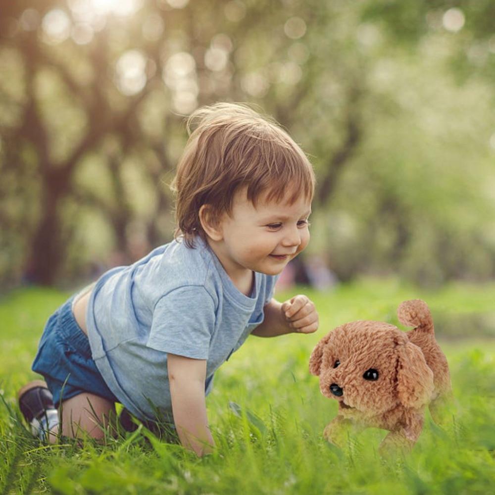 Plush Toy Puppy (8)