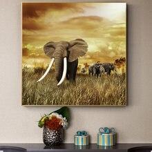 Дикий Животные белого цвета и слоновой кости слон пейзаж маслом
