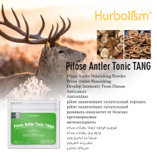 Hurbolism Natural Herbal Formula Pilose Velvet Antler Extract Powder Tonic Tang. Great Properties. Become Strong Again.